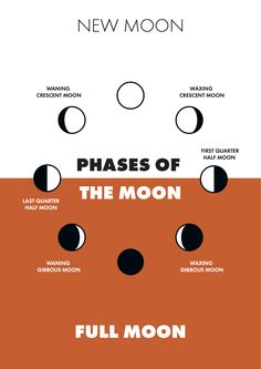 Phases of the Moon by Andrei Bocan.