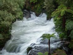 https://flic.kr/p/wU7w6N | Okere Falls | A small kid friendly hike just outside of Rotorua. If you time it right you can see people kayaking the rapids.