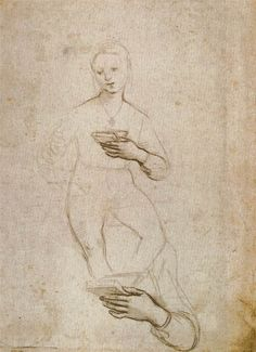 Raffaello-Studi per la Madonna di Pasadena,circa Silverpoint, x cm, Palais des Beaux-Arts de Lille Miguel Angel, Love Drawings, Art Drawings, History Of Drawing, Norton Simon, Silverpoint, High Renaissance, Madonna And Child, British Museum