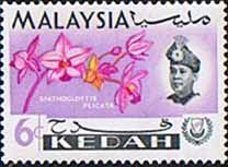 Malay State of Kedah 1965 Orchids SG 118 Fine Mint SG 118 Scott 109 Other British Commonwealth Empire and Colonial stamps Here