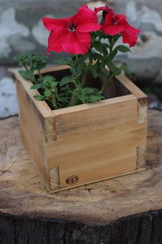 Trendiest 100 DIY planter ideas that will inspire you Wood Shop Projects, Diy Pallet Projects, Woodworking Projects, Wooden Planters, Diy Planters, Planter Ideas, Garden Planter Boxes, Plant Box, Pallet Designs