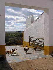 Winery in the Alentejo, Portugal
