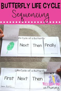 Learn about the Life Cycle of Butterflies using these sequencing resources and by growing your own butterflies. Pair these activities with The Very Hungry Caterpillar for added fun! life cycle Learning about the Life Cycle of Butterflies The Very Hungry Caterpillar Activities, Hungry Caterpillar Craft, Eyfs Activities, Sequencing Activities, Life Cycle Craft, Butterfly Life Cycle, Preschool Lesson Plans, Life Cycles, The Life