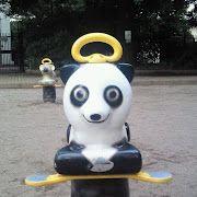 お目目ぱっちりパンダ
