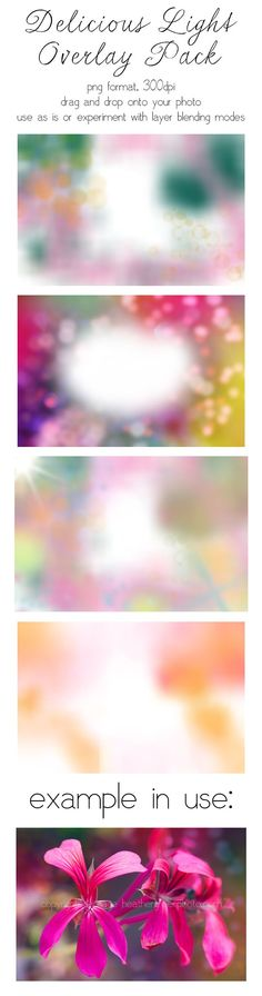 freebie: delicious light photo overlays