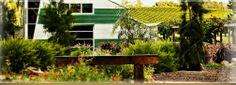 Stonier - Mornington Peninsula Stony, Wineries, Cellar, Victoria, Doors, Plants, Wine Cellars, Plant, Planets