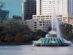 During the City Tour of Orlando, Gray Line Orlando Tours takes you on a round-trip tour to enjoy a day discovering the beauty, history and surroundings of Orlando Florida. Orlando City, Orlando Florida, Tour Tickets, Travel Tours, Round Trip, Mansions, Gray, House Styles, Places