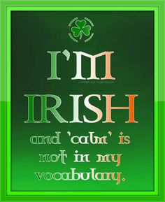 Calm not in my vocabulary - Pretty Little Irish Girl FB