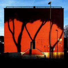shadows on orange