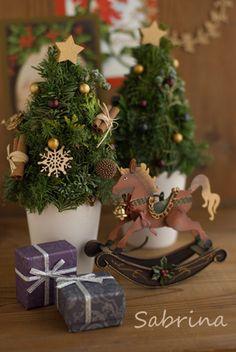 自分にクリスマスプレゼント♪ の画像|サブリナ~花と写真のある暮らし~