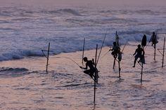 Still Fishing Sri Lanka