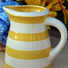 Yellow striped pitcher
