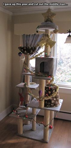 the cat safe Christmas tree.