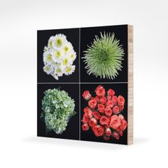 Jesse Michener Floral Art on Plywerk | Cool Mom Tech
