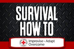 survival how to | urban survival times