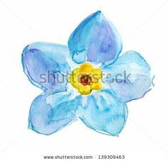 Forget-me-not Light Blue Flower Isolated on White Background. Watercolor by olies, via ShutterStock