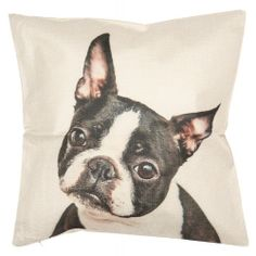 Textil párnahuzat 43x43cm Textiles, Standard Textile, Marlow, Scatter Cushions, Cushion Pads, Indoor Air Quality, Bird Feathers, Boston Terrier, Cute Dogs