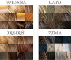 Season hair colors - Spring / Summer/ Autumn/ Winter