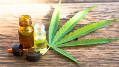 Cannabidiol, also known as CBD, is a natural substance that has recently come into the spotlight for a number of reasons.  CBD oil has become an accepted means of relief from anxiety and inflammation, and the substance's popularity is rising fairly rapidly.