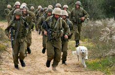 Israeli Defense Force Soldiers