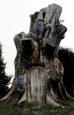 A dark photo, but basically a tree stump turned fairy house! Cool Tree Houses, Fairy Houses, Play Houses, Houses Houses, Hobbit Houses, Giant Tree, Tree Stump, In The Tree, Big Tree