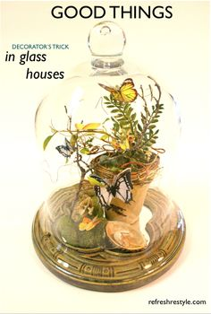good things in glass houses - refreshrestyle.com