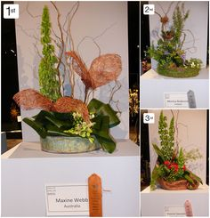 WAFA, World Flower Show, World Association Flower Arrangers, Boston Flower Show