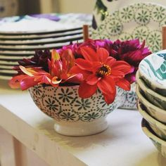 Green Daisy & Spot French Bowl (Christmas 2014) and 6.5 inch Plate (Christmas 2014 and Summer 2015) Discontinued