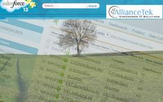 By integrating APIs and Salesforce apps, as well as AllianceTek's customized solutions, a land investment company was able to collect and analyze information more quickly and accurately, saving them time and resources. http://crm.alliancetek.com/por-pittenger.html