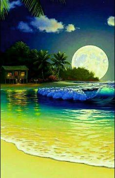 The beach in moonlight