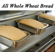 My absolute favorite Whole Wheat Bread recipe (1 hr start to finish!)
