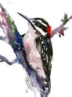 Downy Woodpecker, original watercolor painting, bird painting, woodland birds, Birds of USA artwork by ORIGINALONLY on Etsy