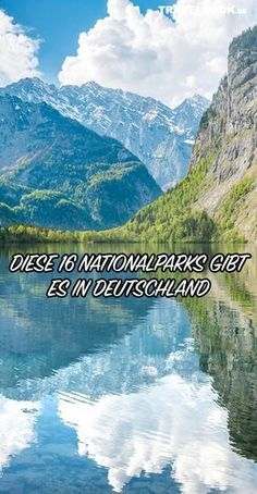 Die 16 Nationalparks in Deutschland Kinds Of Salad, Boost Your Metabolism, Water Supply, Types Of Food, Singles Day, Over The Years, Nationalparks, Road Trip, Germany