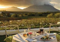 Top 5 things to do in Cape Town: Dinner at the Cape Winelands South Africa Holidays, Cape Town South Africa, Safari Wedding, Whale Watching, African Art, Luxury Lifestyle, Holiday Ideas, Wealth, Life Is Good