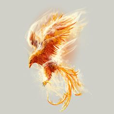 Phoenix Bird tee shirt design - Custom T Shirt Design