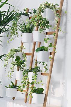 Una habitaci n llena de plantas verdees en macetas y - Soporte macetas ikea ...