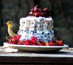 Bird feeder cake Robin Redbreast, My Secret Garden, Robins, Birdhouse, Diy Projects To Try, Love Birds, Lovely Things, Bird Feeders, Butterflies