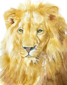 Lion watercolor giclée reproduction. Portrait/vertical orientation. Printed on fine art paper using archival pigment inks. This quality printing allows over 100 years of vivid color in a typical home