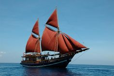 M/S Tiger Blue is a 34m luxury liveaboard scheduling year round diving cruises to Komodo, Banda and Raja Ampat, Indonesia. Boasting the ultimate sea safari...
