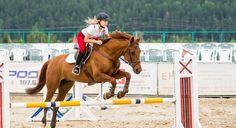 Un cheval et sa cavalière qui saute un obstacle