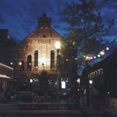 Amsterdam Westerpark // © modernekohome