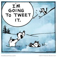 I'm going to tweet it. #muttscomics #tweet #bird #mutts