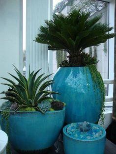 tuquoise glazed pot with succulents, sago palm, container gardening, landscape design Garden Show, Dream Garden, Outdoor Pots, Outdoor Gardens, Landscape Design, Garden Design, Jardin Decor, Sago Palm, House Plants Decor