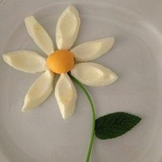 Oeuf en fleur