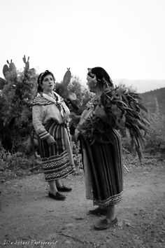 Kabyle women.