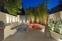 bambous en bacs en béton sur la terrasse moderne avec éclairage led