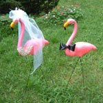 Bride and Groom Flamingo Set