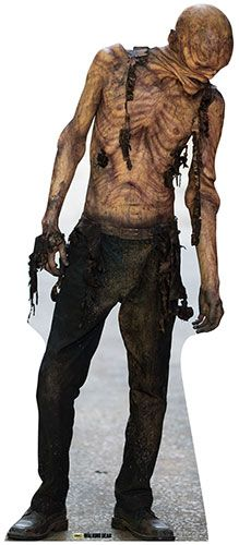 The Walking Dead Michonne Cardboard Cutout Used Damaged
