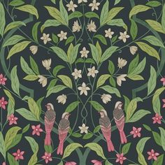 Papier peint Jasmine & Serin Symphony Cole And Son Wallpaper, Forest Wallpaper, Luxury Wallpaper, Bird Wallpaper, Print Wallpaper, Original Wallpaper, Green Wallpaper, Designer Wallpaper, Wallpaper Designs