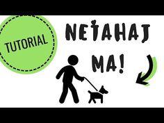 Happy Dogs, Youtube, Animals, Instagram, Animales, Animaux, Animal, Animais, Youtubers
